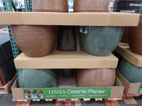 Linea Ceramic Planter Costco 2
