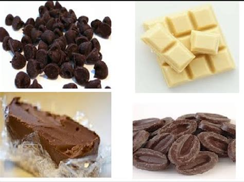 types of chocolate images of different types of chocolates www pixshark com images galleries with a bite