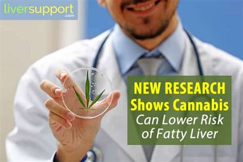 New Research Shows Cannabis Can Lower Risk Of Fatty Liver