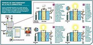 Fonctionnement Pile à Combustible : pile combustible ~ Medecine-chirurgie-esthetiques.com Avis de Voitures