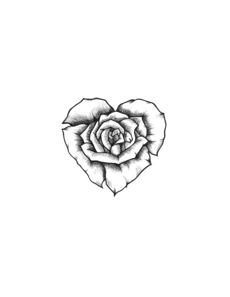 rose heart sketch | Rose drawing tattoo, Tattoos, Rose tattoos