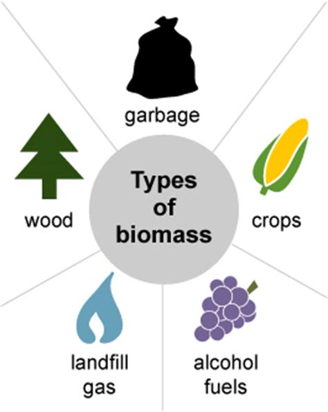 three forms of renewable energy biomass energy explained your guide to understanding