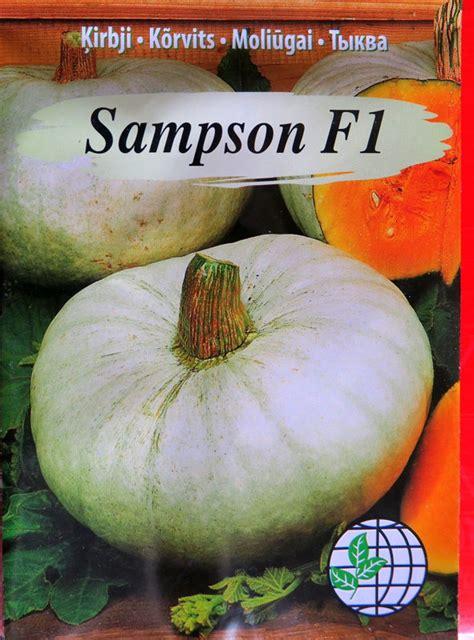 Ķirbji SAMPSON F1 5 g Agrimatco - Ķirbji - Sēklu ...