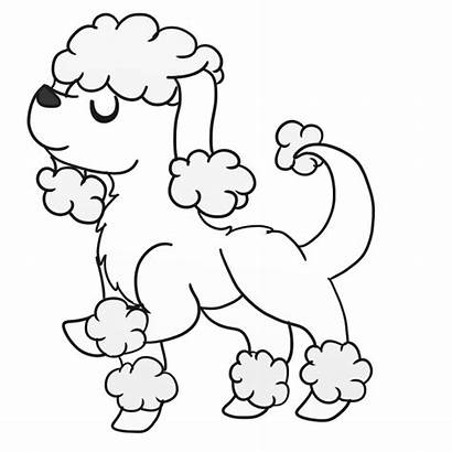 Poodle Coloring Pages French Toy Drawing Skirt