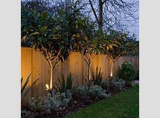 15+ Superb Garden Fence Lighting Ideas