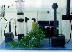 Sauerstoff Im Aquarium : sauerstoff f r die fische im aquarium ~ Eleganceandgraceweddings.com Haus und Dekorationen