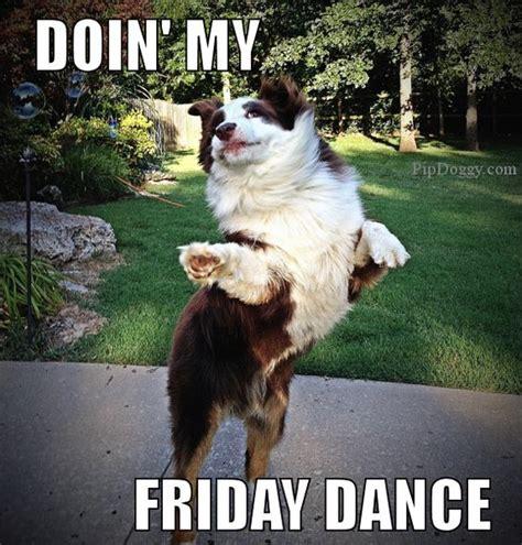 Tgif Meme - dog meme friday dance tgif dogs pinterest friday