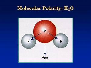 Molecular Polarity  H2o