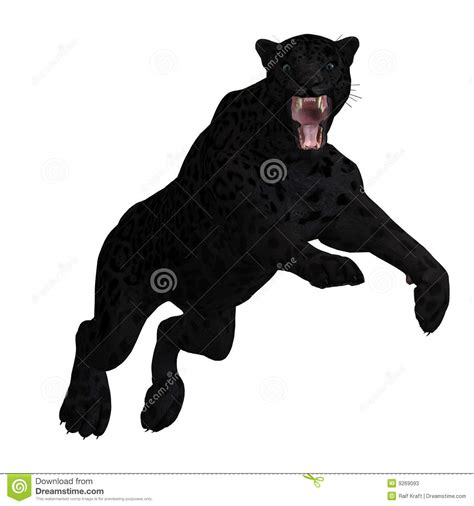 Big Black Cat Stock Image | CartoonDealer.com #26018929