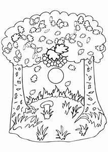 Feuilles D Automne à Imprimer : coloriage l automne et son beau paysage ~ Nature-et-papiers.com Idées de Décoration