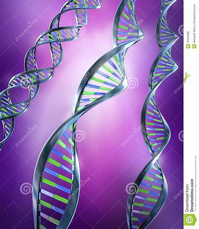 Dna Helix Strands Simple Dual Double 3d