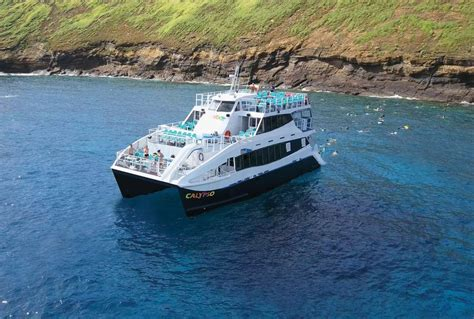Catamaran Dinner Cruise Maui by Calypso Is Maui S Newest Power Catamaran And Is Great For