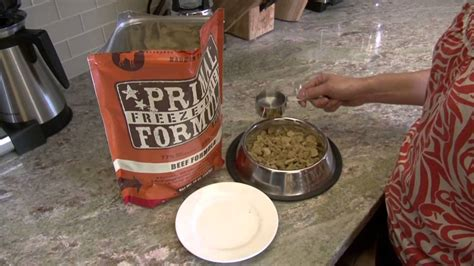 feed primal freeze dried formula youtube