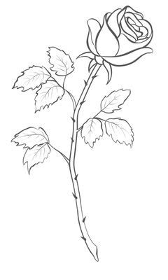 Rose Drawing Single Flower Outline Tattoo Stencil | Just Free Image Download | Rose outline