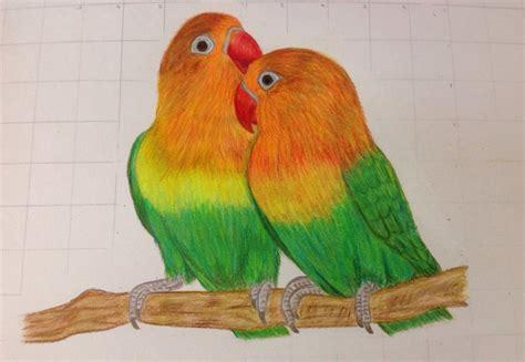 love birds artist forum