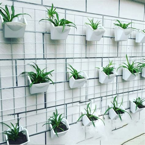 cheap indoor plants get cheap house plants hanging aliexpress com