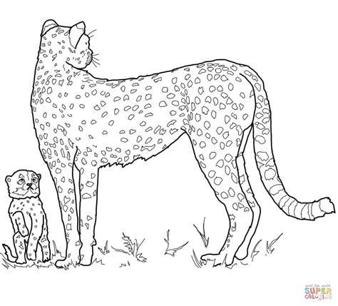 cheetah coloring pages baby cheetah coloring page coloring home