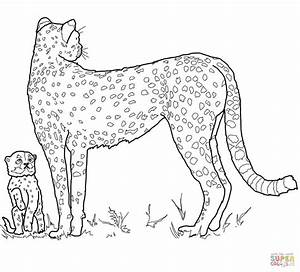 Baby Cheetah And Mother Coloring Page