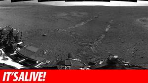 Mars Rover Curiosity Moves For The First Time | Gizmodo ...