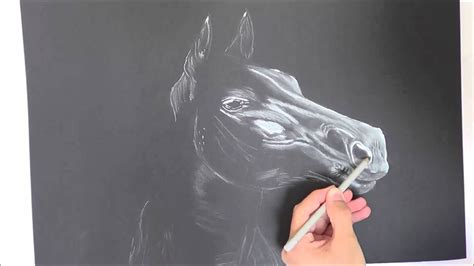 drawing  horse  black paper youtube