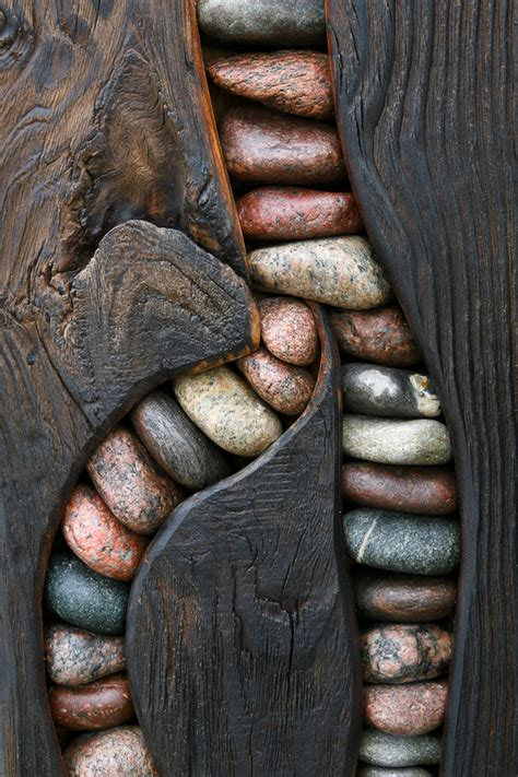 Stones Within Wood  Fragments