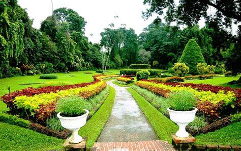 royal botanical gardens royal botanical gardens leisure ceylon