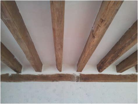 plafond pour la cmuc choix sur spot encastr 233 au plafond