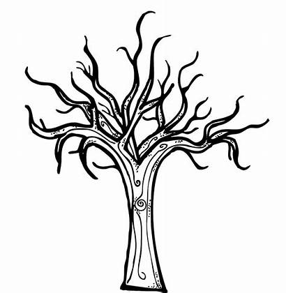 Tree Coloring Pages Bare Leafless Fall Leaves