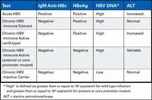 Hepatitis B Surface Antibody Positive Hepatitis B Vaccine