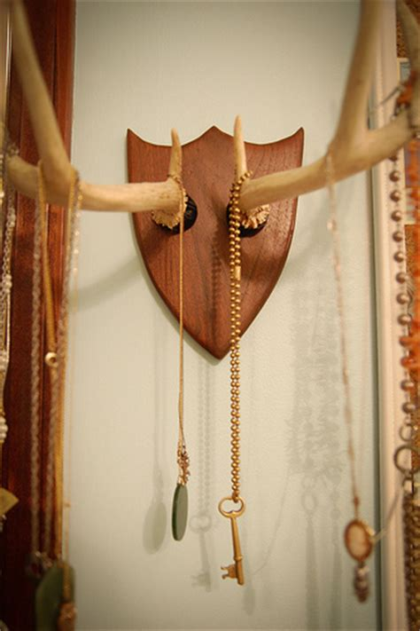 diy deer antler necklace rack     taxidermy