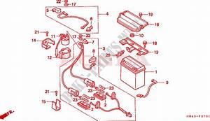 1999 Honda Fourtrax 300 Wiring Diagram : battery for honda trx 300 fourtrax 4x4 1999 honda ~ A.2002-acura-tl-radio.info Haus und Dekorationen