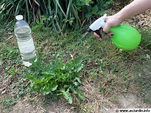 Desherbant Mauvaise Herbe : 1000 id es propos de vinaigre des mauvaises herbes sur ~ Premium-room.com Idées de Décoration