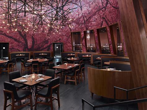 japanese cuisine bar kumi