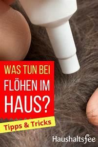 Waschmaschine Riecht Unangenehm Was Tun : 261 best toilette wc reinigen images on pinterest ~ Markanthonyermac.com Haus und Dekorationen