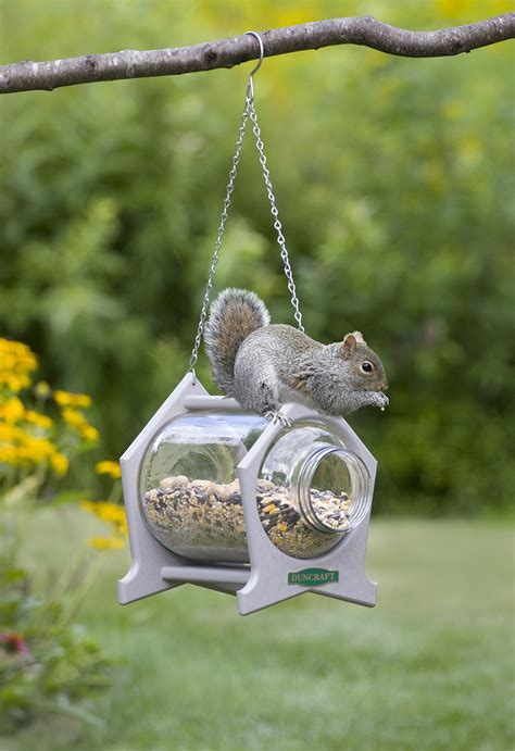 duncraftcom hanging squirrel jar