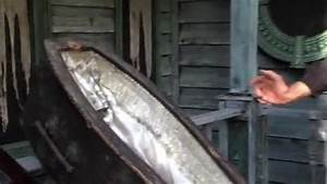 Video Human Bones Found In Haunted House
