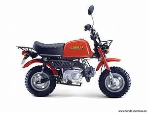 Moto Honda 50cc : moto honda z 50 gorilla 50cc ~ Melissatoandfro.com Idées de Décoration