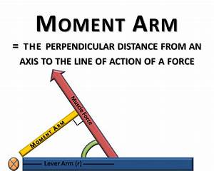 Basic Biomechanics  Moment Arm  U0026 Torque