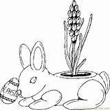 Coloring Planter Bunny Pages Coloringpages101 Holidays sketch template