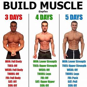 Should You Be Interested Take A Look At My Bodybuilding Dvd Website  S