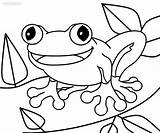 Coloring Toad Pages Frog Print Printable Cute Paper Frogs Sketch Toads Cool2bkids Within Super Cartoon Getcoloringpages Animals Popular Template Neo sketch template