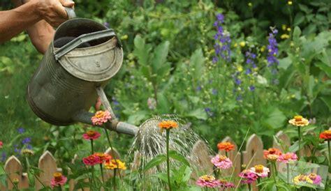 garten wellness effektive mikroorganismen living green