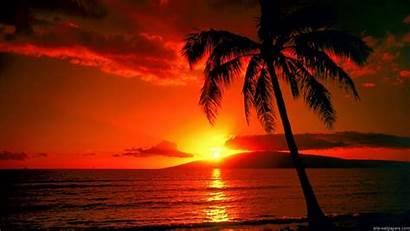 Tropical Sunset Island Wallpapers Lockscreen