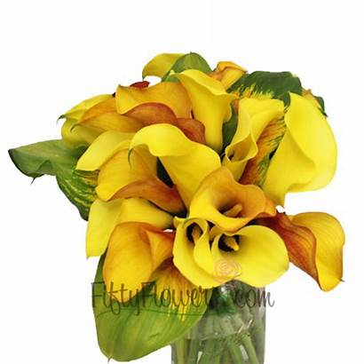 Calla Lilies Leaf Mini Lily Centerpieces Leaves