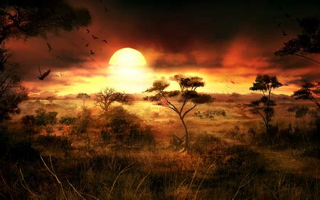 africa sunsets nature background wallpapers  desktop