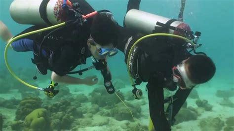 scuba diving  curacao   julia youtube