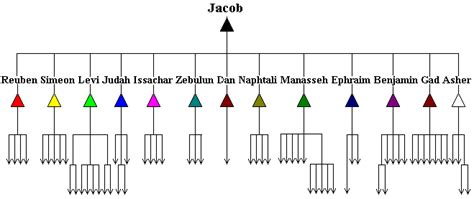hebrew lineage organization