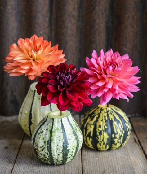1001 + Ideen, Anleitungen Und Fotos Zum Thema Herbstdeko