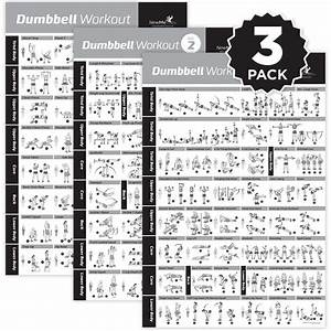 Dumbbell Exercise Poster Vol  1 2 3 3-pack-laminated