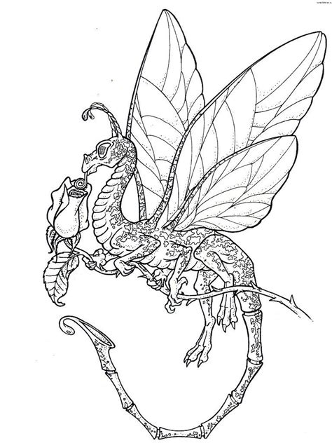 coloring pages licious dragon coloring pages  adults